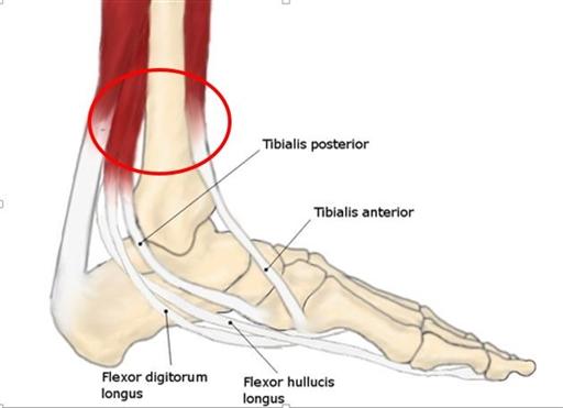 plötslig smärta ovanpå foten